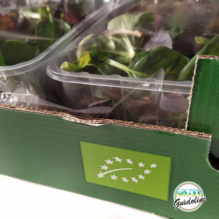 Pack insalate Guidolini, salad pack, Salatpackung