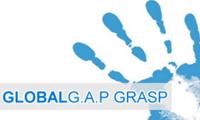 GRASP GENARAL RULE  Guidolini Davide