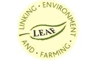 LEAF Certificate, Guidolini
